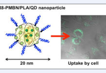 Japan Nanoparticles