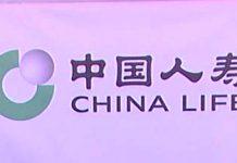 Chinese insurance premium