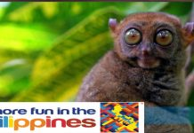 Fake Travel Agencies in the Philippines